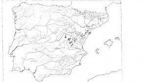 CASAS RURALES EN ALBACETE